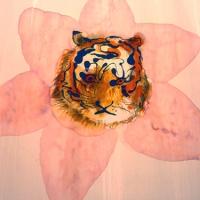 f_hs_04_lotus_tiger.jpg