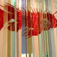 f_pm19_lionfish.jpg